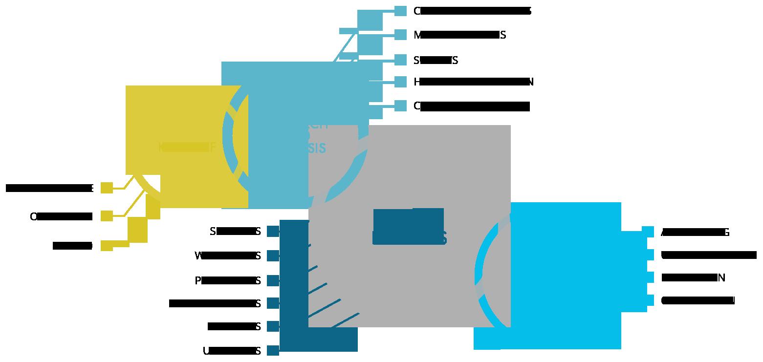 Website Design and Web Development process