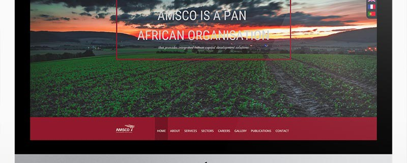 amsco-featured